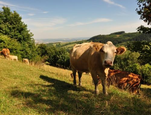 Zahájení činnosti mladých zemědělců – Seminář 10.3.2016 Luhačovice